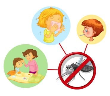 Things to Know about Dengue Fever
