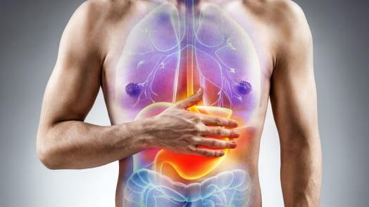 Digestive Diseases Medicine